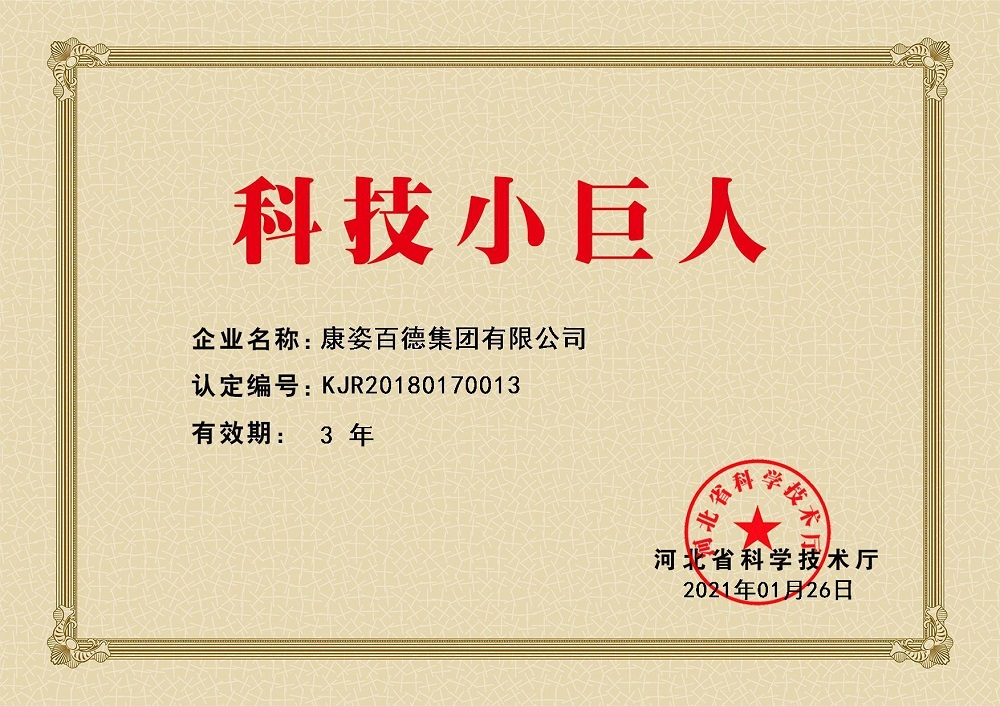 """河北省科学技术厅授予康姿百德""""科技小巨人""""荣誉称号"""